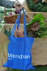 Meridian shopping bag