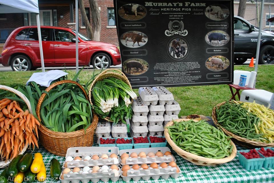 Murray's Farm table at market