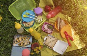 Top view of various picnic food at outdoor